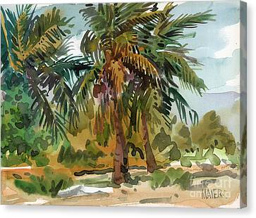 Palms In Key West Canvas Print by Donald Maier