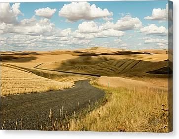 Palouse 15 Canvas Print by Claude Dalley