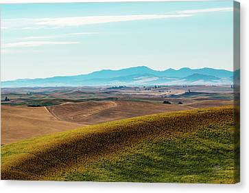 Palouse 17 Canvas Print by Claude Dalley