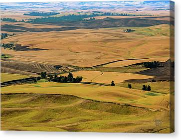 Palouse 27 Canvas Print by Claude Dalley