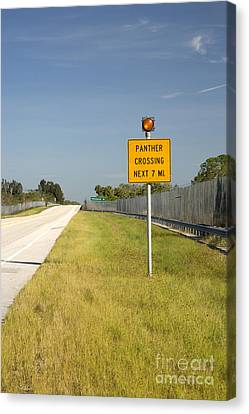 Panther Crossing Road Sign Canvas Print by Inga Spence