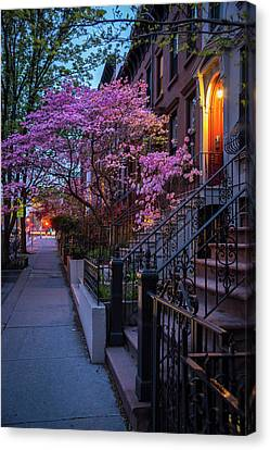 Park Slope Canvas Print by Christian Heeb