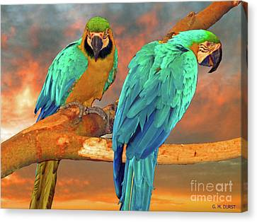 Parrots At Sunset Canvas Print by Michael Durst