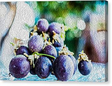Passion Fruits Canvas Print by Jon Ma