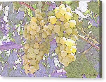 Pastel Grapes Canvas Print by MikeHoward Photography