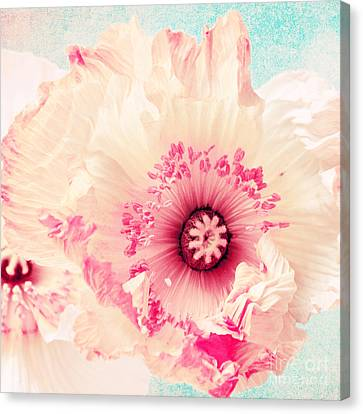 Pastell Poppy Canvas Print by Angela Doelling AD DESIGN Photo and PhotoArt