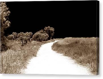 Path Into The Dark Canvas Print by John Rizzuto
