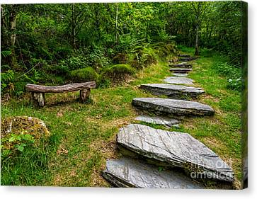 Path Into The Forest Canvas Print by Adrian Evans