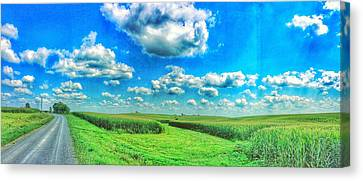 Path Less Traveled  Canvas Print by Jame Hayes