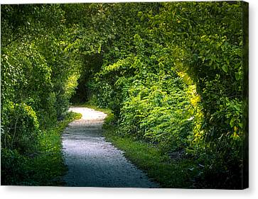 Path To The Secret Garden Canvas Print by Marvin Spates
