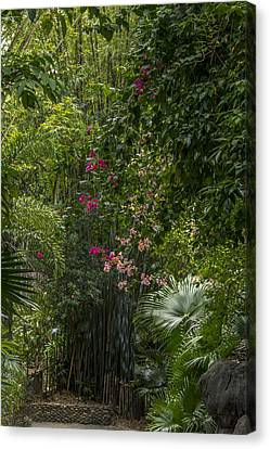 Path With Flowers Canvas Print by Tito Santiago
