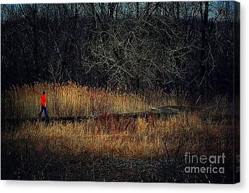Pathway Canvas Print by Frank J Casella