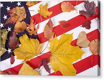 Patriotic Autumn Colors Canvas Print by James BO  Insogna