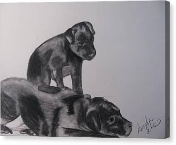 Patterdales Canvas Print by Amanda Burek