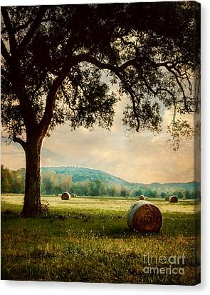 Peace In The Valley Canvas Print by Tamyra Ayles
