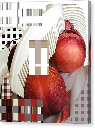 Peach And Haircomb Canvas Print by Evguenia Men