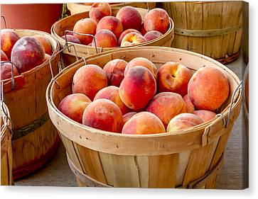 Peaches For Sale Canvas Print by Teri Virbickis