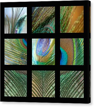 Peacock Feather Mosaic Canvas Print by Lisa Knechtel