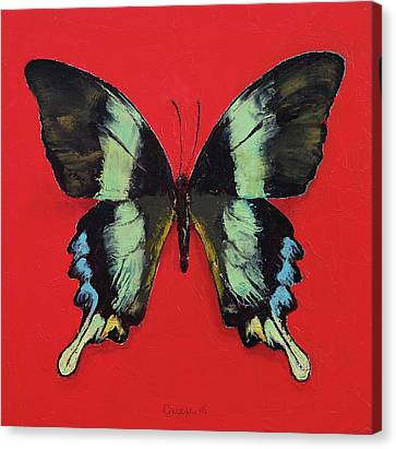 Peacock Swallowtail Butterfly Canvas Print by Michael Creese