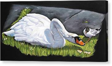 Pecking Order Canvas Print by Vanda Luddy