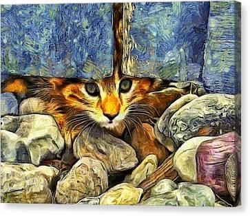 Peek A Boo Canvas Print by Mark Kiver