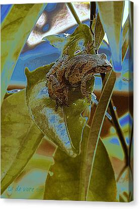 Peeper Canvas Print by Tg Devore