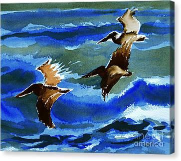 Pelican Flight  10-15-15 Canvas Print by Julianne Felton