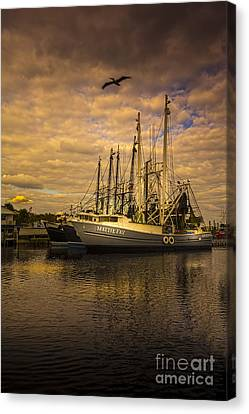 Pelican Over Mattie Fay Canvas Print by Marvin Spates