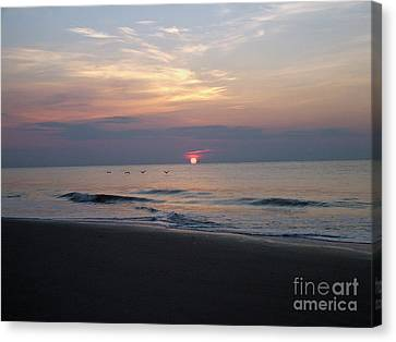 Pelicans At Sunrise On Tybee  Canvas Print by Doris Blessington