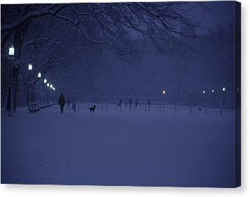 People Walk Their Dogs Canvas Print by Stacy Gold