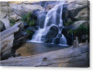 Peppermint Falls Canvas Print by Soli Deo Gloria Wilderness And Wildlife Photography