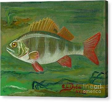 Perch Canvas Print by Anna Folkartanna Maciejewska-Dyba