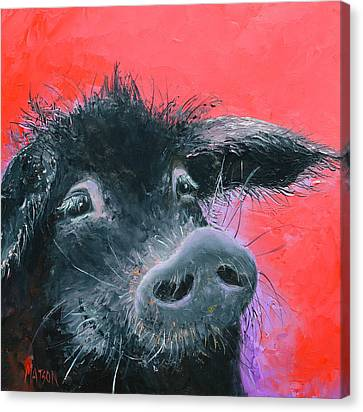Percival The Black Pig Canvas Print by Jan Matson