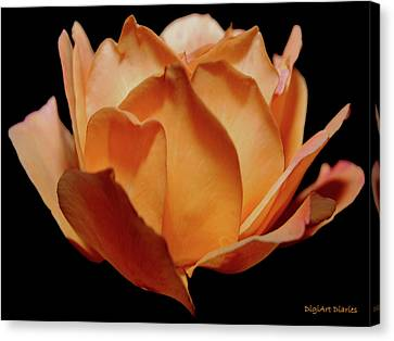 Petals Of Orange Sorbet Canvas Print by DigiArt Diaries by Vicky B Fuller