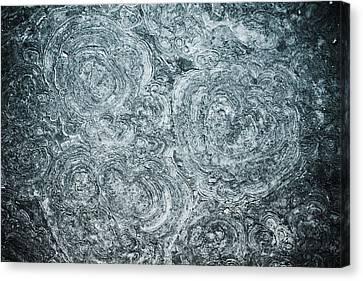 Petrified Sea Floor Canvas Print by Ryan Kelly