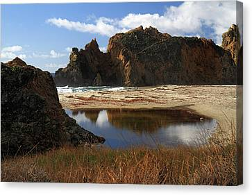 Pfeiffer Beach Landscape In Big Sur Canvas Print by Pierre Leclerc Photography