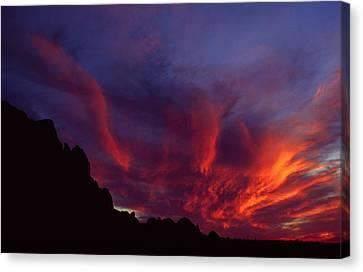 Phoenix Risen Canvas Print by Randy Oberg