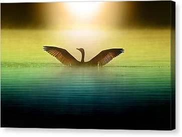 Phoenix Rising Canvas Print by Rob Blair