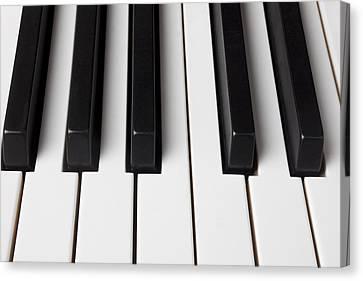 Piano Keys Close Up Canvas Print by Garry Gay