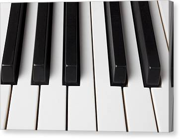 Piano Keys Close Up Canvas Print by Garry Gay