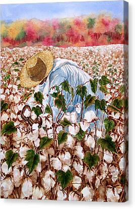 Picking Cotton Canvas Print by Barbel Amos