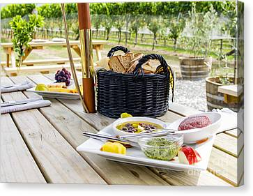 Picnic In Vineyard Canvas Print by Patricia Hofmeester