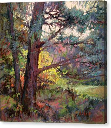 Pine Tree Dance Canvas Print by Donna Shortt