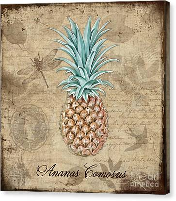 Pineapple, Ananas Comosus Vintage Botanicals Collection Canvas Print by Tina Lavoie