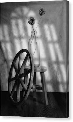 Pinecones In The Window Canvas Print by Tom Mc Nemar