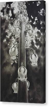 Pinedrops Canvas Print by Estephy Sabin Figueroa