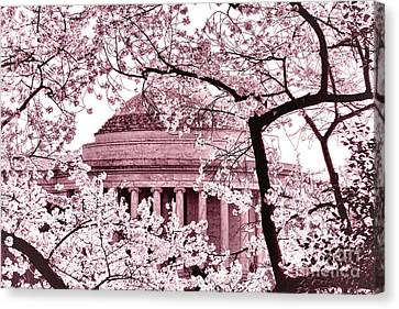 Pink Cherry Trees At The Jefferson Memorial Canvas Print by Olivier Le Queinec