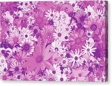 Pink Flowers Canvas Print by JQ Licensing