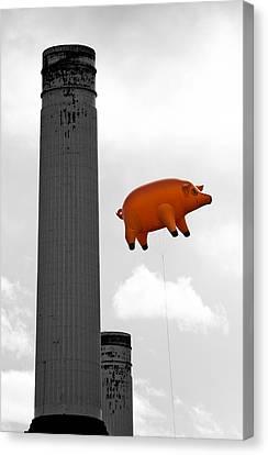 Pink Floyds Pig Canvas Print by Dawn OConnor