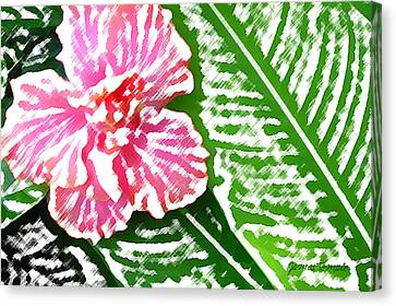 Pink Hibiscus Canvas Print by James Temple